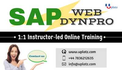 SAP Web Dynpro for ABAP Training online course and certification