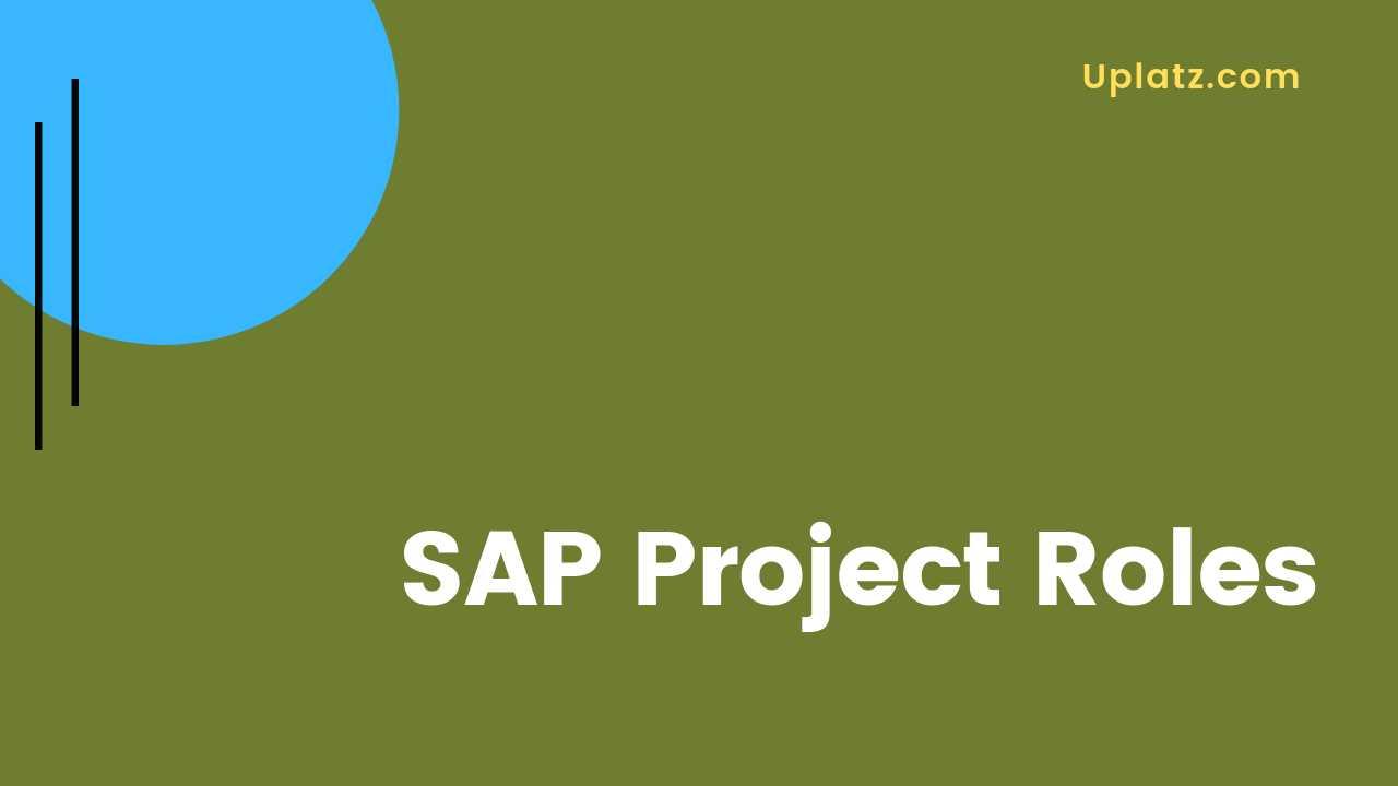 Video: SAP Project Roles