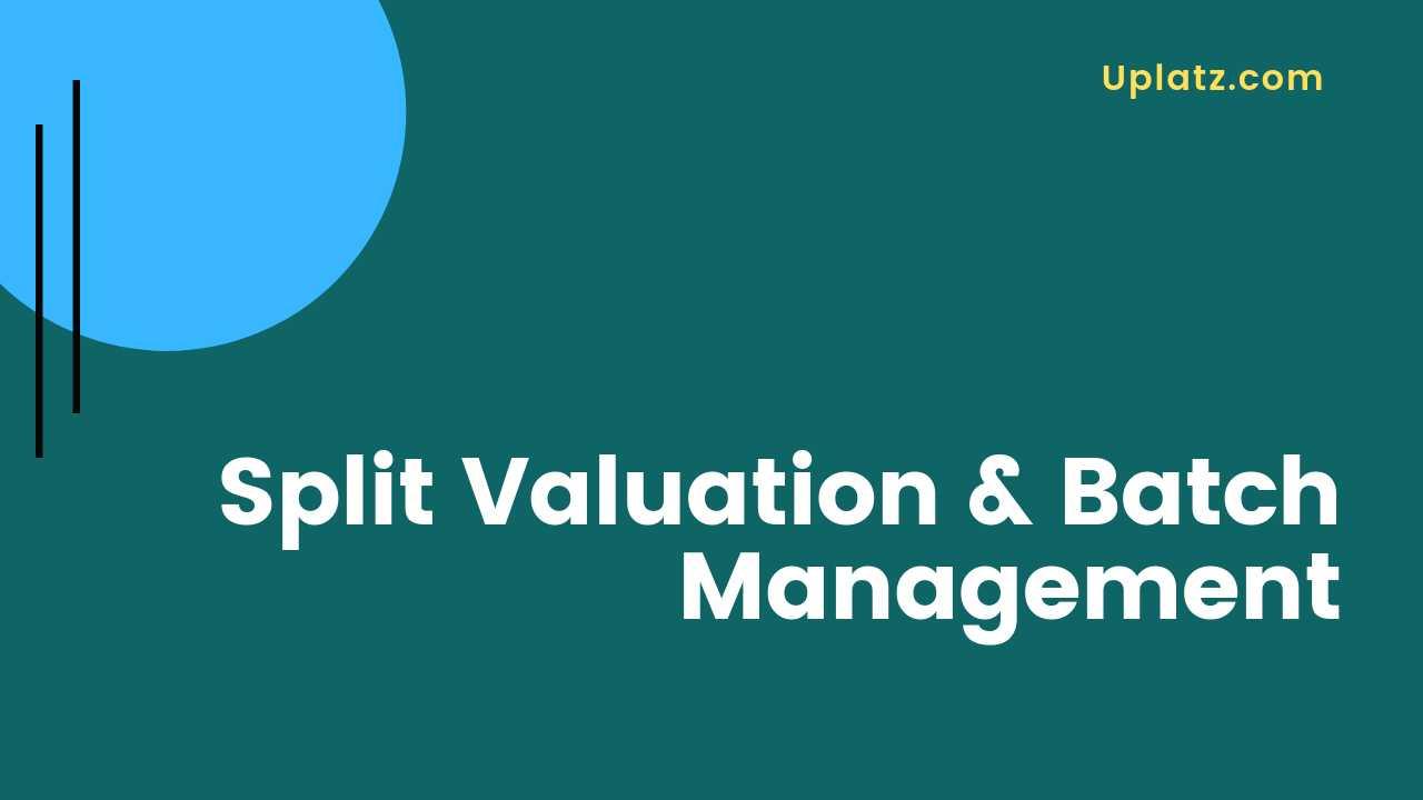 Video: Split Valuation and Batch Management