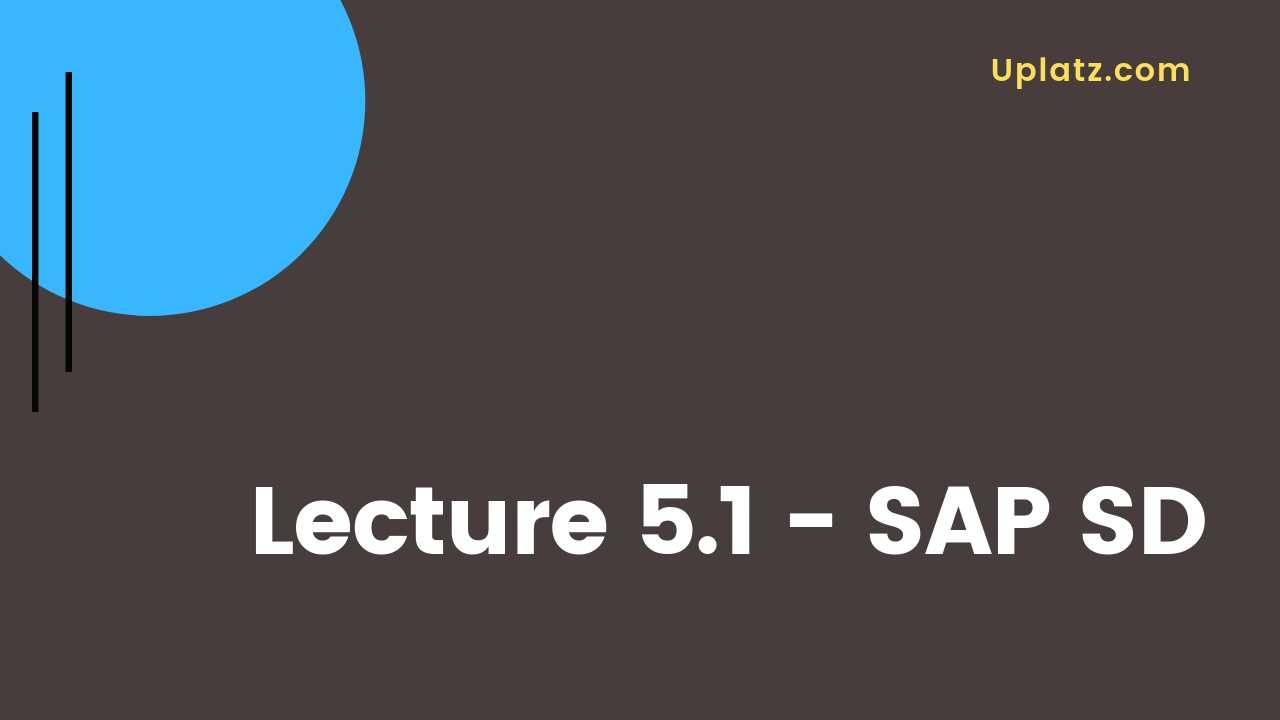 Video: SAP SD - all lectures