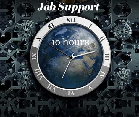 SAP Job support - 10 hours online course and certification