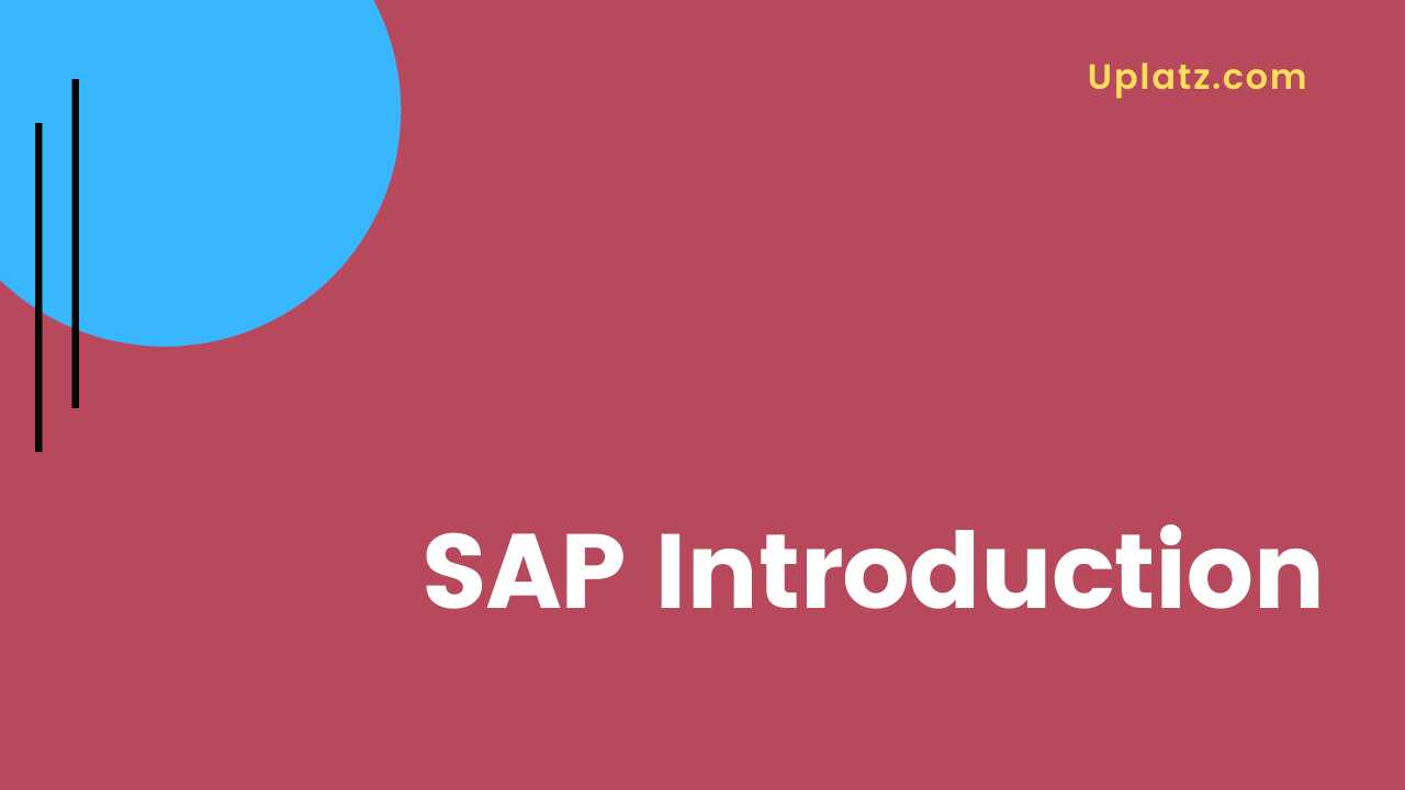 Video: Introduction (SAP MM)