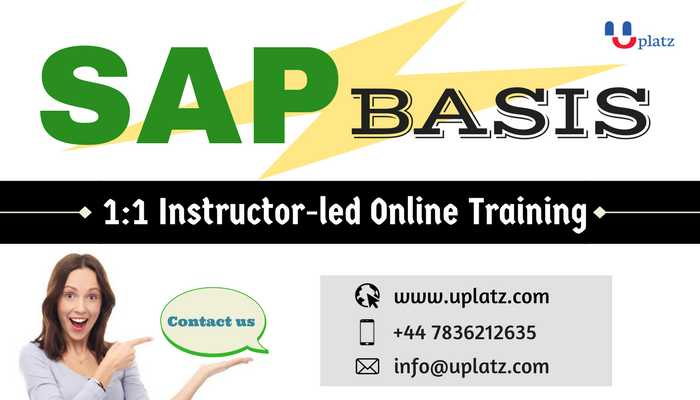 SAP Basis & Security online course and certification