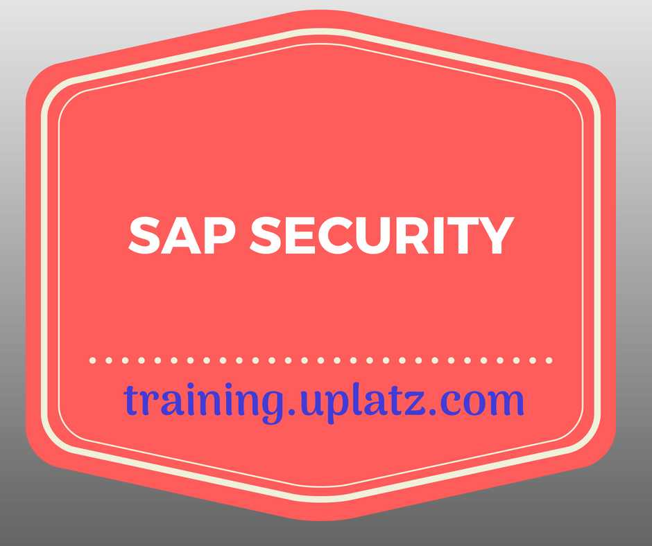 SAP Security Training online course and certification