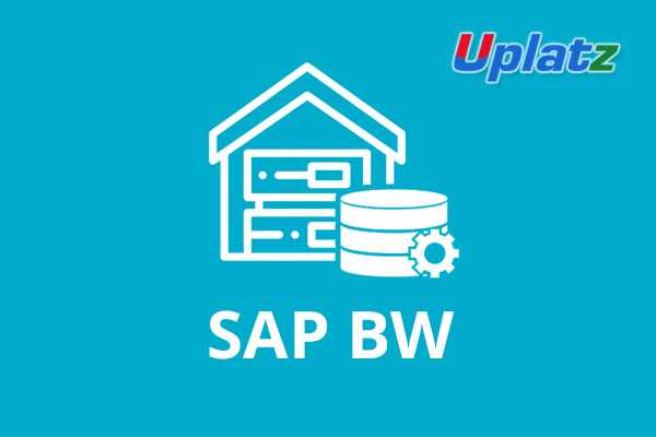 SAP BW (Business Warehouse)