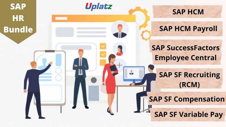 Bundle Course - SAP HR (HCM - SuccessFactors EC - SF RCM - UK Payroll)