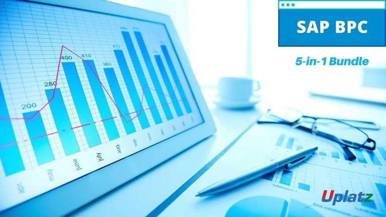 Bundle Multi (2-in-1) - SAP BPC
