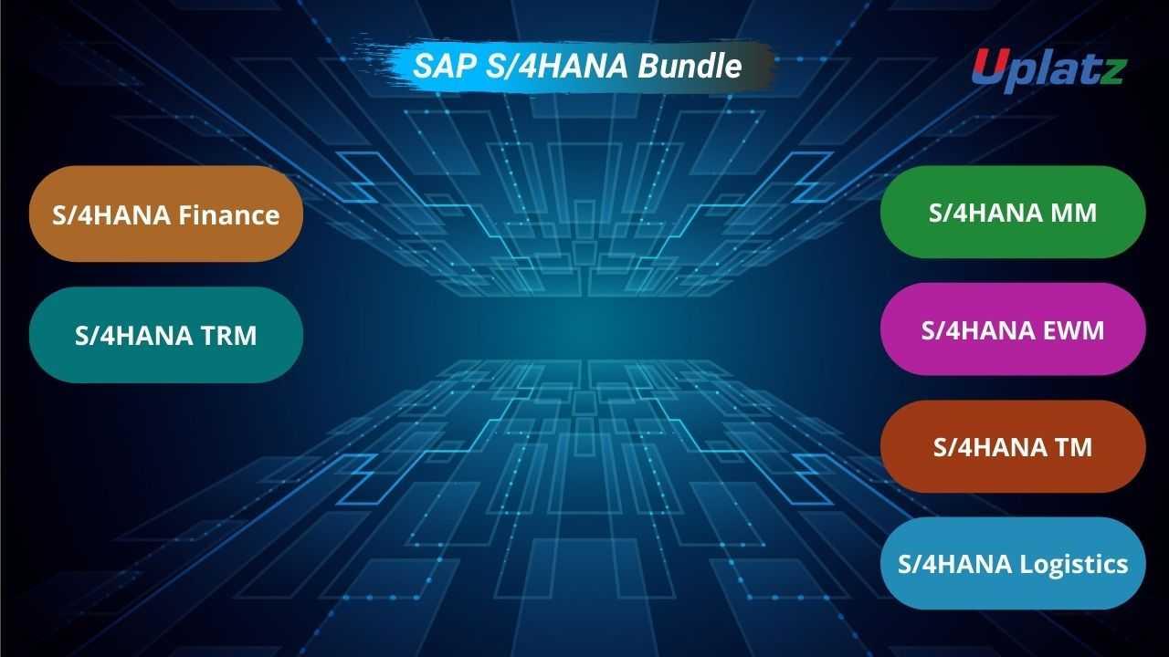 Bundle Ultimate - SAP S/4HANA (Finance - TRM - MM - EWM - TM - Logistics)