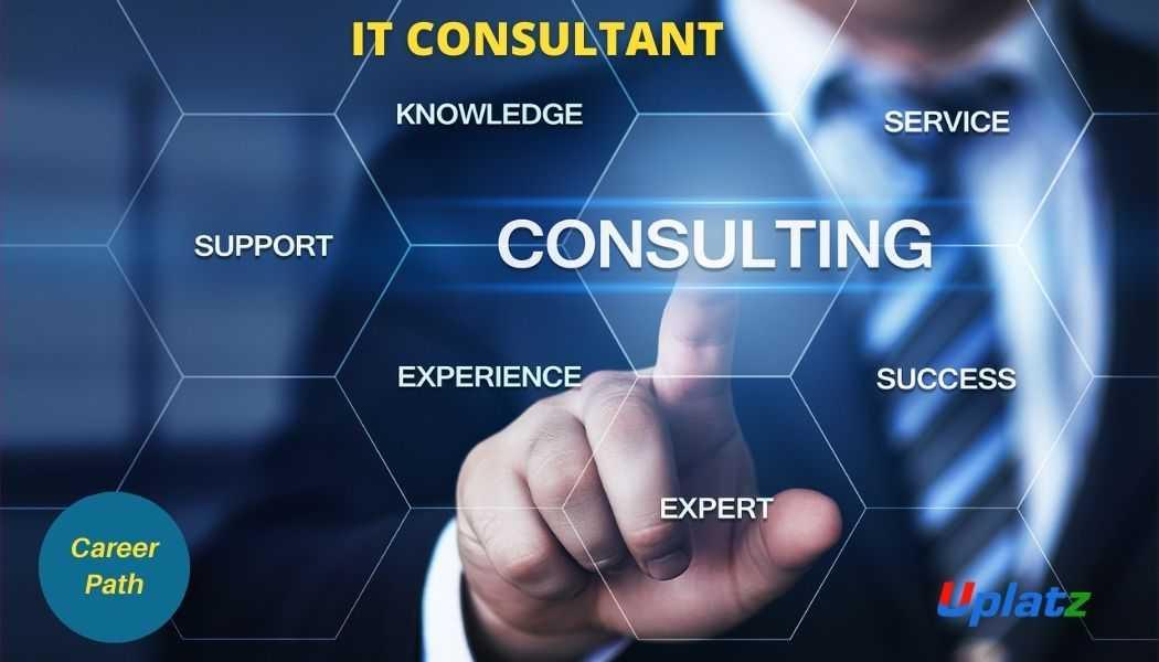 Career Path - IT Consultant