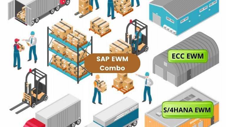 Bundle Combo - SAP EWM (ECC and S/4HANA)