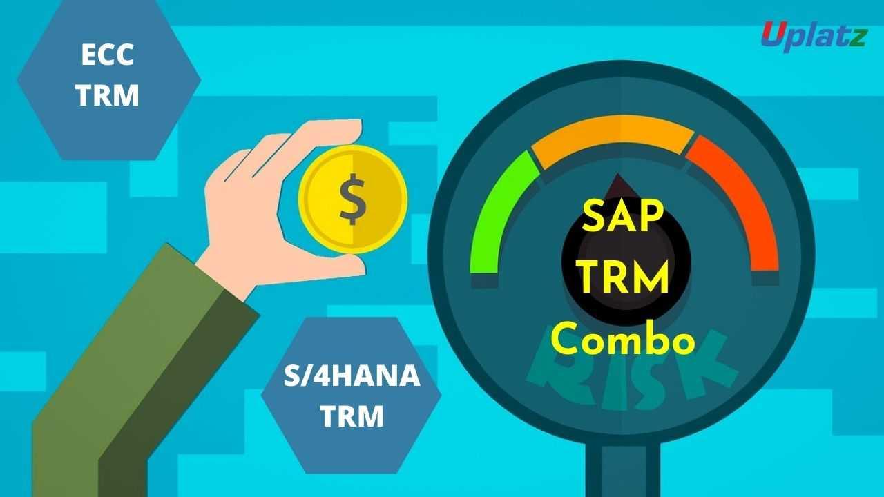 Bundle Combo - SAP TRM (ECC and S/4HANA)
