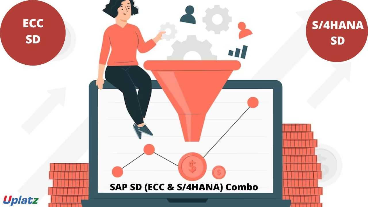 Bundle Combo - SAP Sales (ECC and S/4HANA)