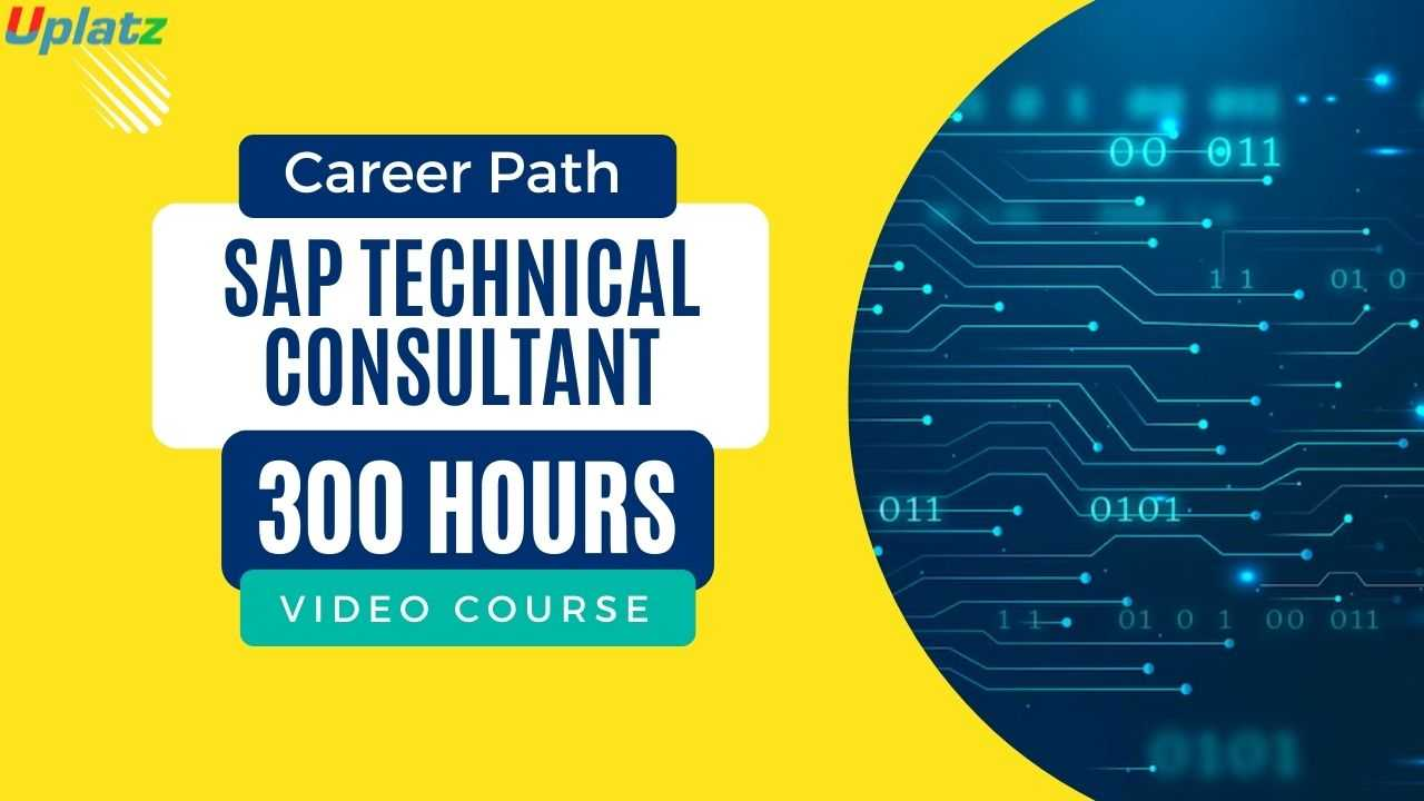 Career Path - SAP Technical Consultant