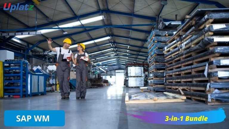 Bundle Multi (3-in-1) - SAP WM