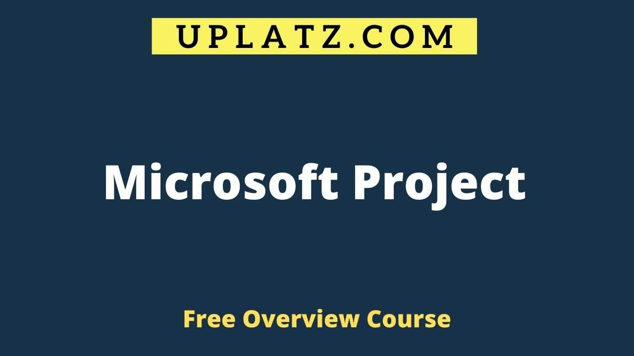 Microsoft Project overview