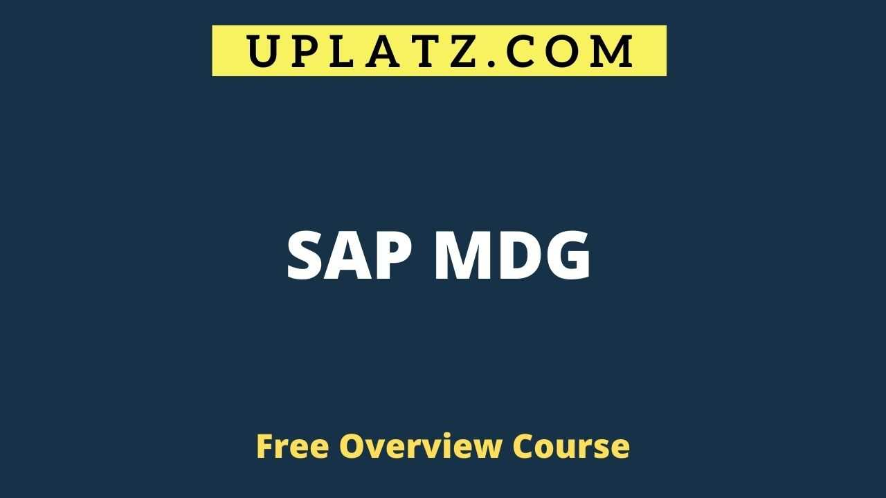 Overview Course - SAP MDG